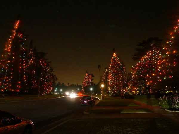 San Marino Christmas Tree Lane (Photo - kidsofsocal.com). - 2017 Holiday Tree Lighting Listings ColoradoBoulevard.net