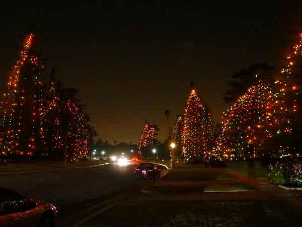 2016 Holiday Tree Lighting Listings | ColoradoBoulevard.net