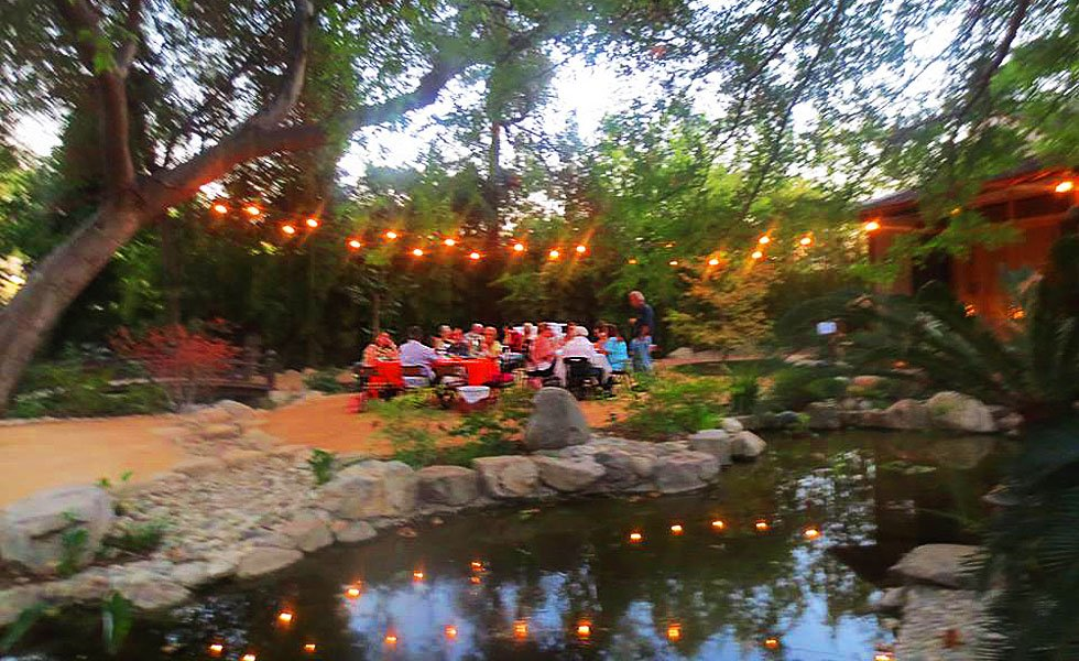 Japanese Garden At Night music, wine, art fair in the japanese garden | coloradoboulevard