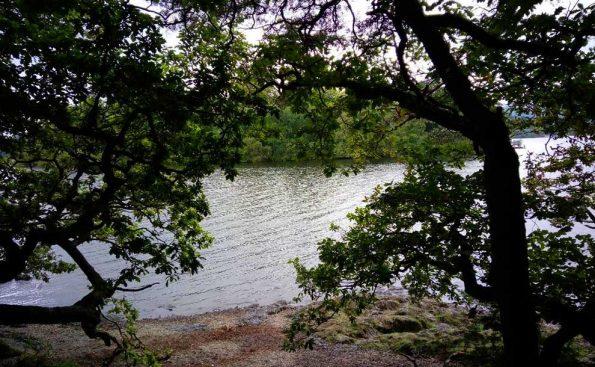 Calm by water (Photo - Rachel Sutcliffe).